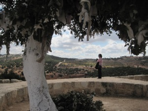 Elisa under the Elijah tree atop Tell Mar Eliyas.